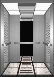 Desenk Wechselstrom-Passagier-Aufzug-Höhenruder-Qualität