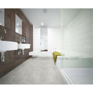 Modieuze Decoratieve Binnenlandse Tegel 50X230mm van de Muur Buliding Materiaal Verglaasde Shebron