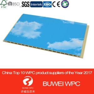 De Commissie van de Muur van pvc WPC van de Vezel van het bamboe