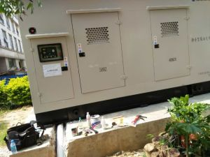 Tipo de silencioso generador diésel Cummins de 440 kw con EDTA