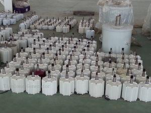 Alternatore a magnete permanente di Ff-8kw/375rpm/AC380V (PMG/PMA/Hydro)