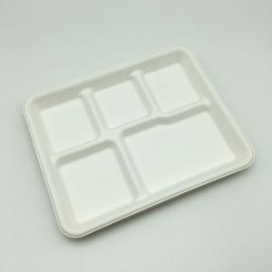 La vaisselle jetable biodégradable récipient alimentaire, de bagasse 5 compartiments de nourriture de la vaisselle les plaques de vaisselle de la canne à sucre