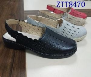 Mode de vente chaude mature de confortables chaussures femmes avec Ztt8470