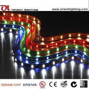 Indicatore luminoso di striscia flessibile di alto potere LED del IP 43 dell'UL SMD 5050 del Ce