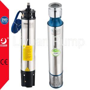 1 pompa sommergibile dell'HP, pompa del mezzo sommergibile di bassa tensione