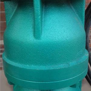 pompa lunga verticale Sri Lanka dell'acqua di pozzo del tubo dell'asta cilindrica 45kw