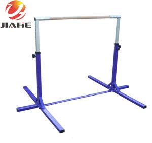 De Rekstok van de Apparatuur van de gymnastiek voor Verkoop