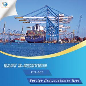 FCL Expédition de consolidation de Guangzhou à Dubaï