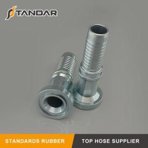 Montaggio di tubo flessibile idraulico materiale dell'acciaio inossidabile di Bsp