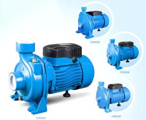 Высокое качество Cpm центробежный насос чистой воды насосы домашних хозяйств с маркировкой CE утвердил Cpm-170 1HP/0,75 HP/0,55 HP