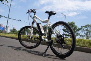 新しい方法電気道のバイク48V 500W