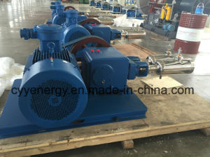 중간 Pressure 및 Large Flow Nitrogen Oxygen Argon Vacuum Piston Pump
