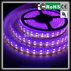 5050 LED Strip di Decoration Flexible Strip