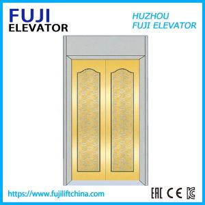 FUJI Vvvf 0.4m/S si dirige l'elevatore facente un giro turistico a buon mercato piccolo del passeggero della villa dell'elevatore panoramico/l'elevatore di vetro di osservazione