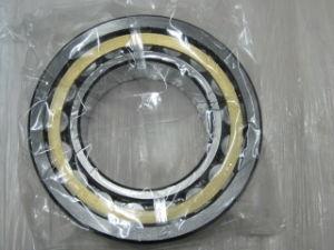 Gebildet in China Cylindrical Roller Bearings Nj2211e