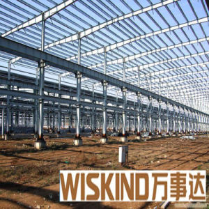 Wiskind Hermosa estructura de metal (WSDSS fiable312)