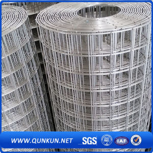 Galvanized/PVCによって塗られる溶接された金網