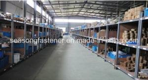 De Wasmachine van het Slot van de Tand van het roestvrij staal/Getande Wasmachine (DIN6798)