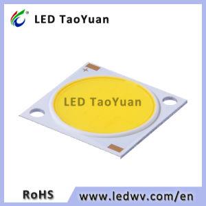 3-50W LED de alta potencia de luz LED Downlight COB COB