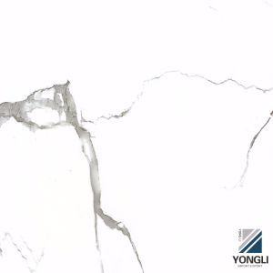 Elegante zes-Oppervlakte die Verglaasde Tegel oppoetst