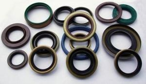 Front Axle Oil Seal with Dust Lip