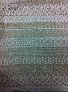 Tissu de dentelle de mode (BP-031)