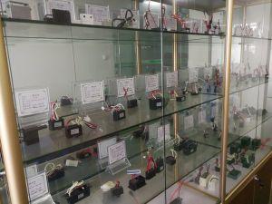 Klimaanlagen-Anionen-Generator (SY-F1)