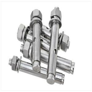 Ancoraggio dell'acciaio inossidabile e fornitore del bullone d'ancoraggio del cuneo