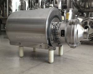 Pomp van uitstekende kwaliteit van de Instructie van de Rang van het Voedsel van het Roestvrij staal Ss304/Ss16 de Zelf