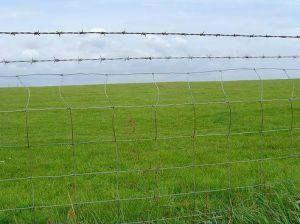 牧草地のための高い抗張電流を通されたヒンジ接合箇所の牛農場の塀