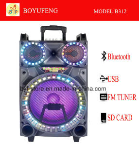 건전지 Bluetooth (B312)를 가진 직업적인 휴대용 (트롤리) 스피커