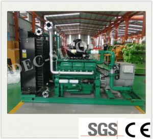 AC BTU van de Output de Lage Reeks In drie stadia van de Generator van het Gas 50kw