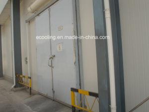 Kundenspezifische mittlere Temperatur-Tiefkühlkost-neue haltene Kaltlagerung