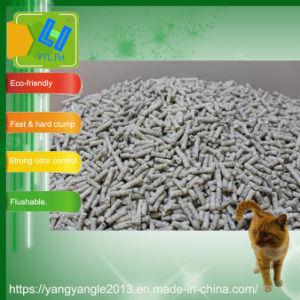 熱い販売法の実行中カーボン豆腐のキャットリター