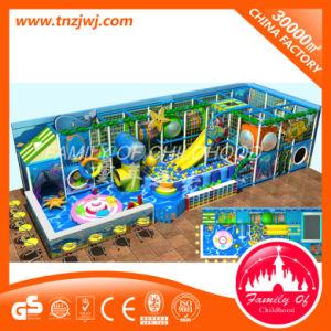 2016 het Populaire Zachte Binnen Ongehoorzame Kasteel van de Speelplaats