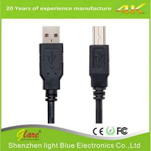 Soem, das rechtwinkliges Mini-USB-Kabel packt