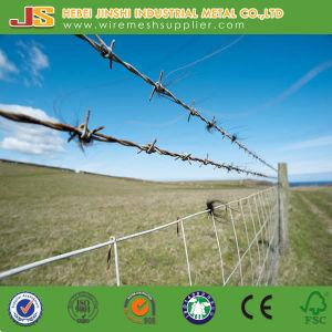 Filo aperto dei doppi fili dei campi dell'ambiente rurale per protezione
