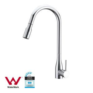 Gesundheitlicher Ware-Chrom-Ende-Küche-Hahn mit Wasserzeichen u. Wels (AQ56055)