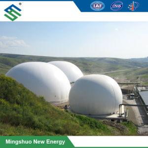 Supporto flessibile di memoria di gas del serbatoio del biogas per gas naturale