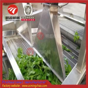 Lavadora de frutas y verduras de la línea de producción de lavado