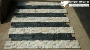 Zwart-witte Quartz Tiles voor Wall Panel (CS064)