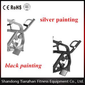 Strumentazione di forma fisica di prezzi di /Wholesale di aumento di ginnastica/edilizia di corpo laterali Machine/ISO-9001 Tz-4010