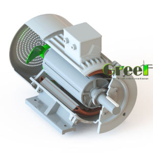 1kw 100rpm 낮은 Rpm 3 단계 AC 무브러시 발전기, 영구 자석 발전기, 고능률 다이너모, 자석 Aerogenerator
