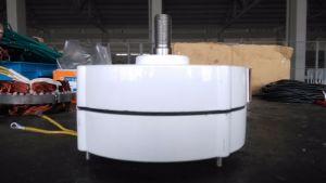 100W Generators van de Magneet van het Gebruik van de Turbine van de wind de Permanente