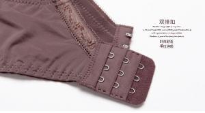 Comercio al por mayor sostén de encaje y Panty conjunto Bustiers (CS21129)