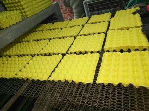 يدار ورقيّة أحذية صيغية آلة, ثمرة صيغية يجعل [مشن ببر] بيضة صيغية يجعل آلة