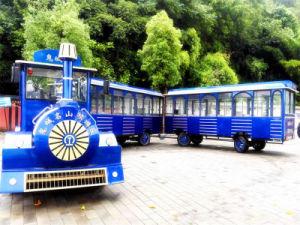 O parque de diversões de trem turístico grossista modelo de equipamento Dsw-D58