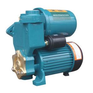 PS Bomba電気自動圧力自動プライミング遠心ジェット機の周辺水ポンプ