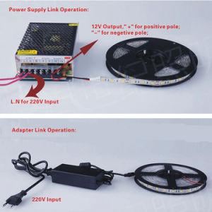 striscia chiara di cc SMD 3528 LED di bianco caldo con Ce&RoHS