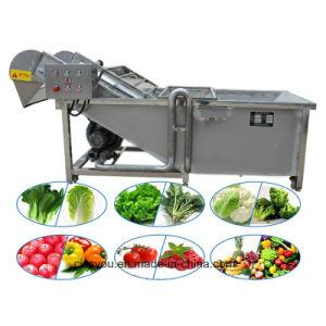 과일 야채 세척 청소 가공 기계 (WS)를 판매하는 중국
